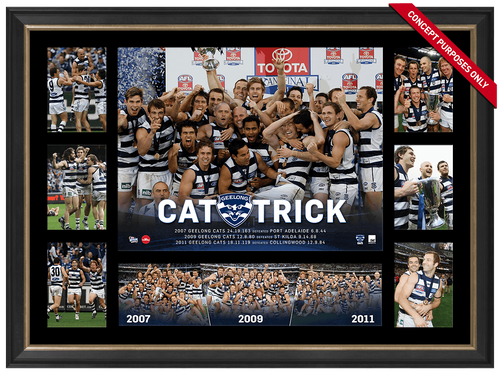 Geelong Cat Trick Premiers Super Frame