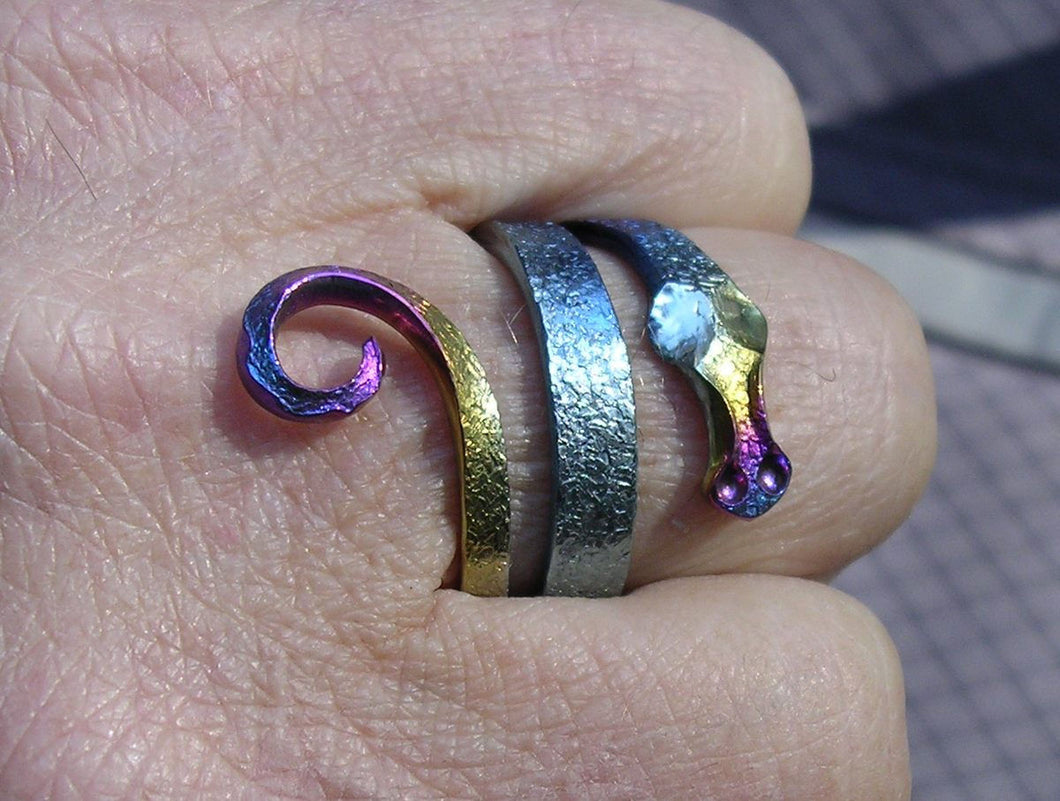 Dragon Energy Ring™ in Rainbow Niobium