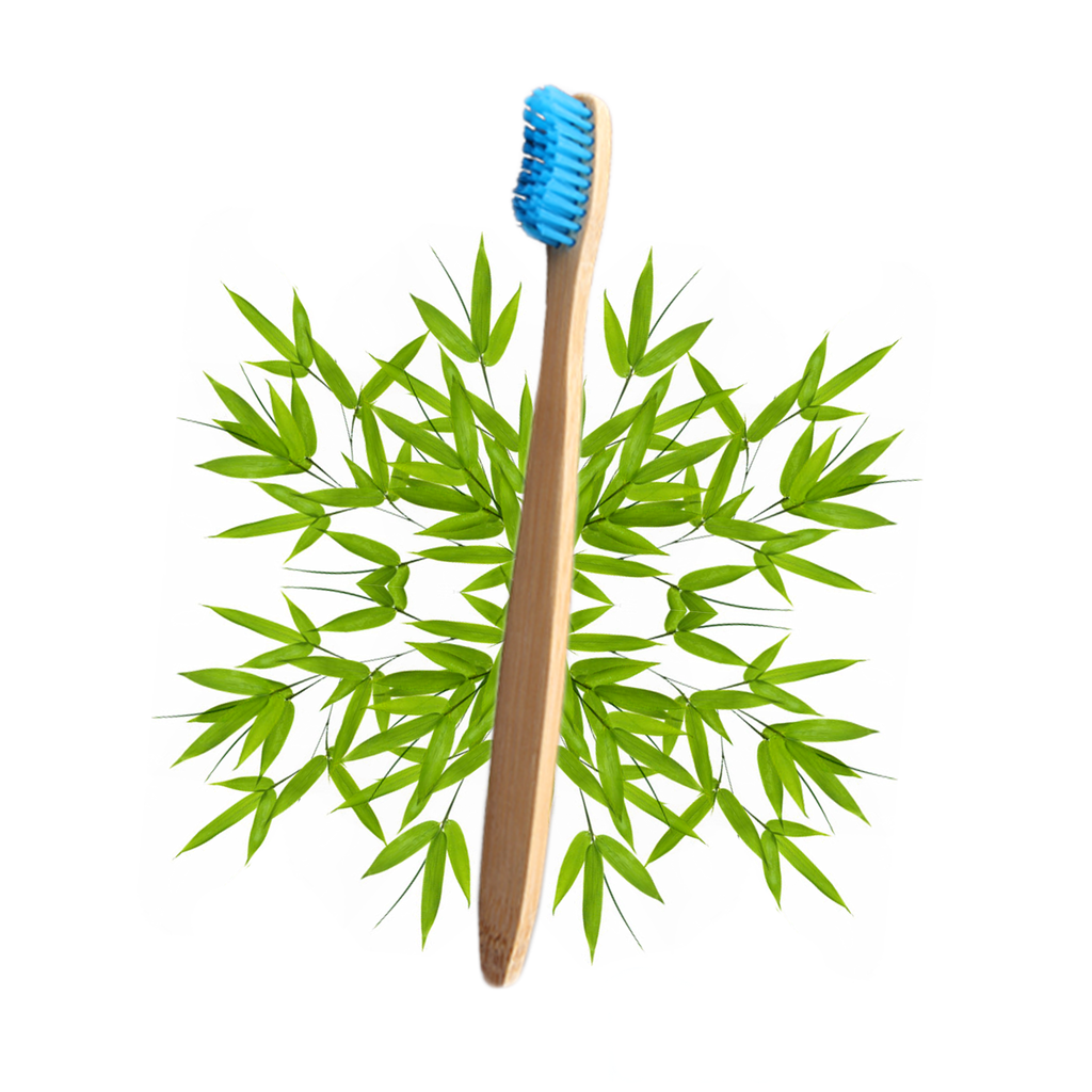 The Bamboo Toothbrush (Multi-Pack) - Snaptoothbrush