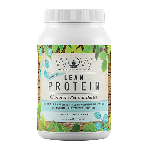 WOW Lean Protein Chocolate Peanut Butter
