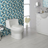 FV E182 Apolo One-Piece Toilet - White