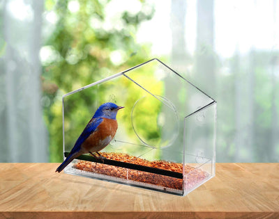 Ashman Deluxe Window Bird Feeder, Spacious Design, Attractive & Long Lasting, Fill it with Sunflower Black Oil Seeds, Easy to Install, Clean and Fill, Great Gift for Friends and Family