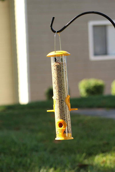 Ashman Bird Feeder, Metal Top and Bottom, Spacious Design, Attractive & Long Lasting