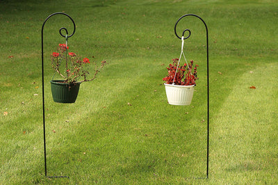 Ashman Shepherd Hook, 1/2 Black Inch Diameter, Solid Metal for Hanging Plant Bird Feeders, Mason Jars, Plant Hangers, Flower Baskets, Christmas Lights, Lanterns, Mason Jars and for Weddings