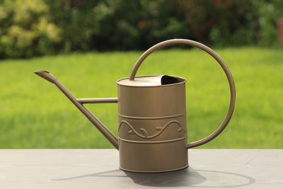 Ashman Bronze Watering Can for Outdoor and Indoor Plant Watering Use with 3.75 Litre Capacity.