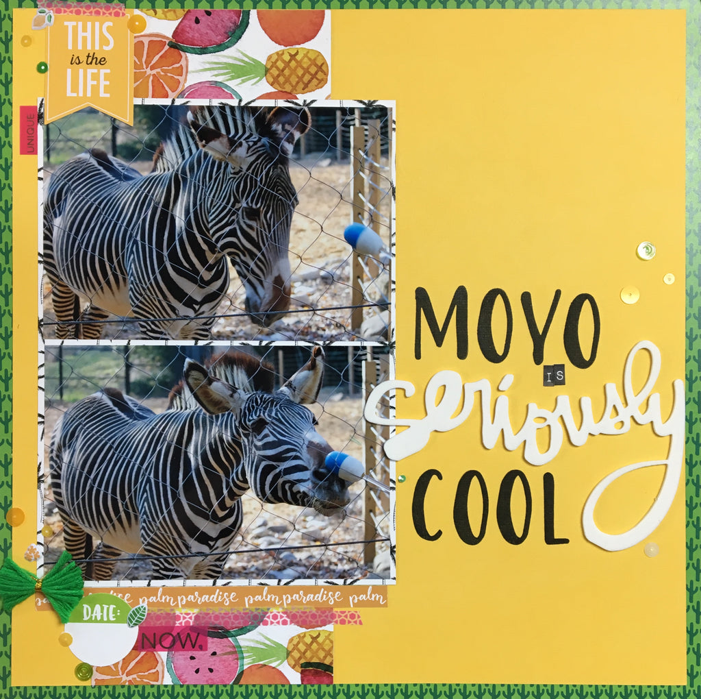 Moyo is Seriously Cool by Katelyn