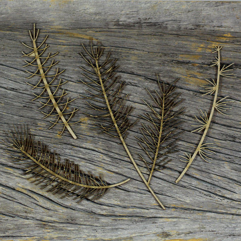 Chipboard - Pine Branches