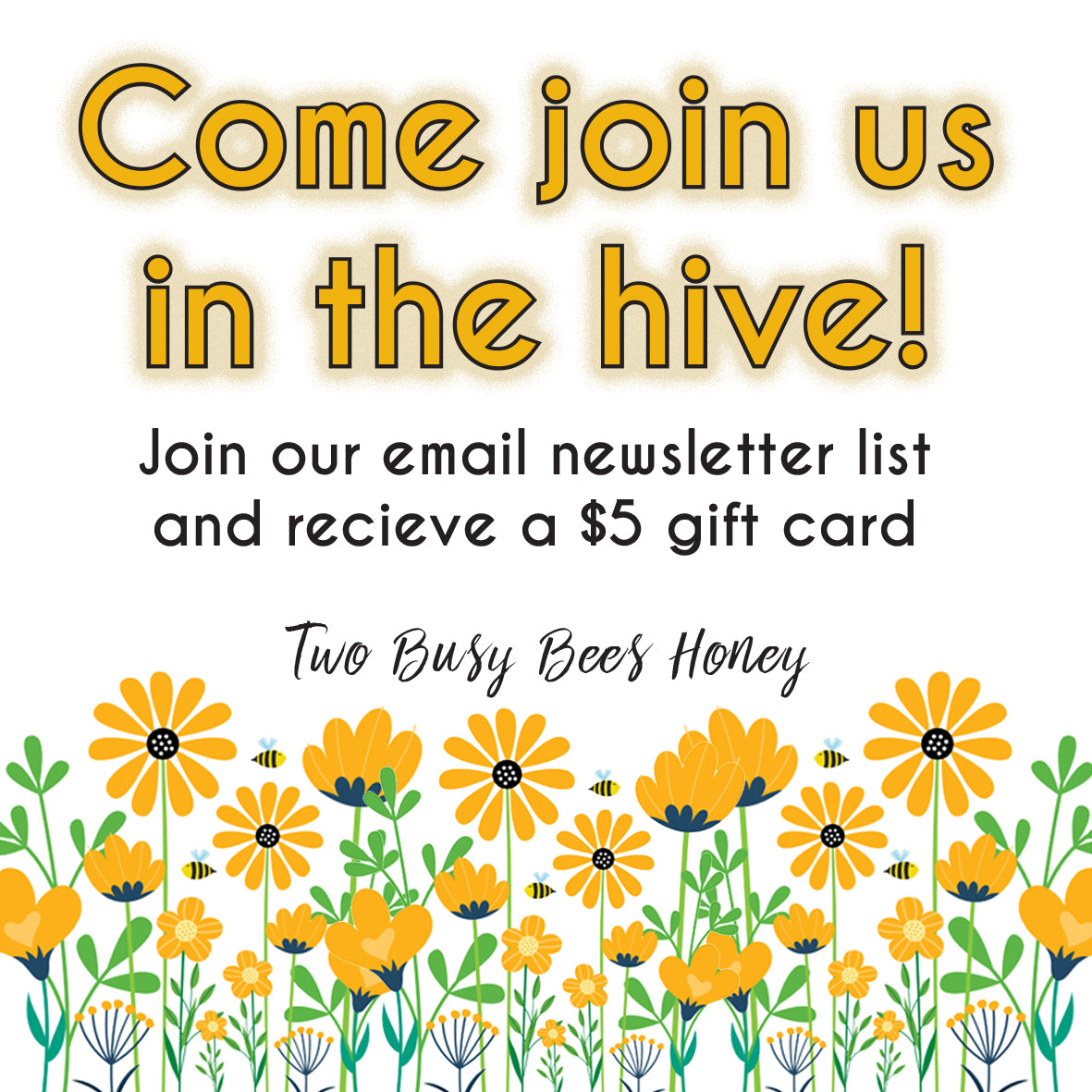 Email Newsletter Subscription - Two Busy Bees Honey
