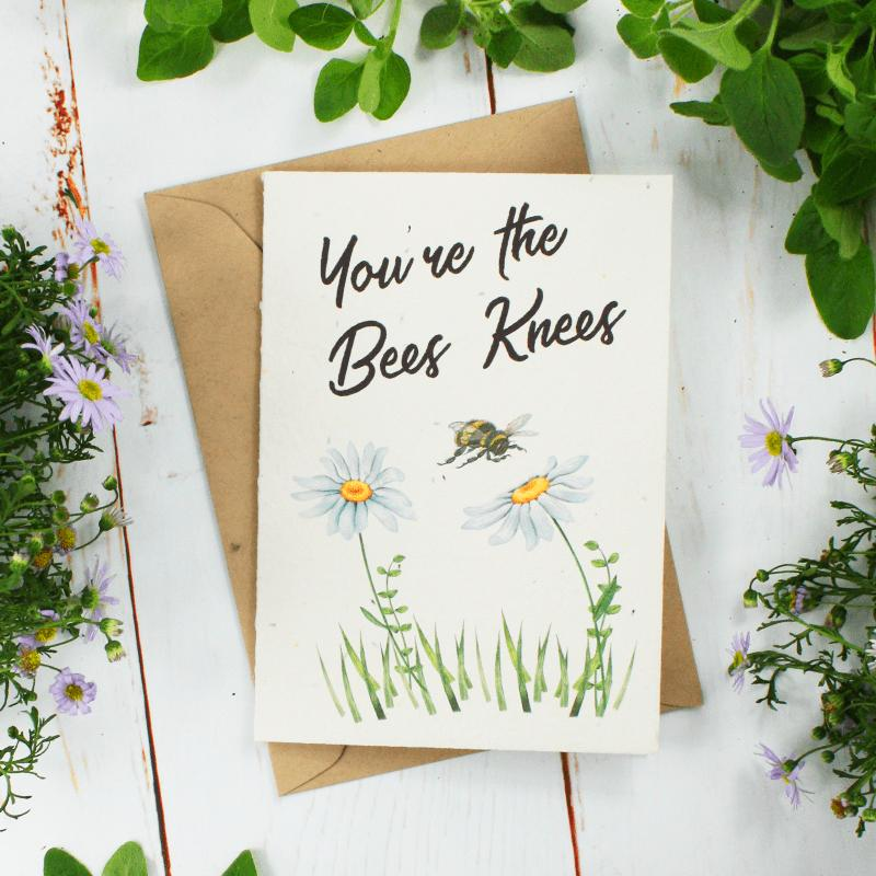Greenery-Lane-Seed-Card-Two-Busy-Bees-Honey-Australian-Pure-Raw-Honey