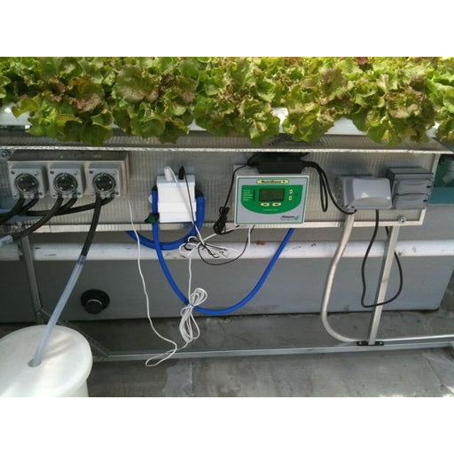 American Hydroponics Standard Commercial NFT Growing System - Lettuce-NWGSupply.com