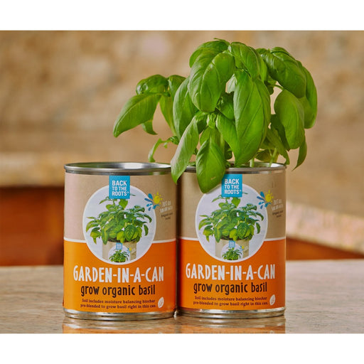 Garden in a Can, Basil-NWGSupply.com