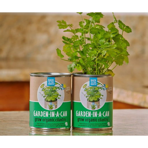 Garden in a Can, Cilantro-NWGSupply.com