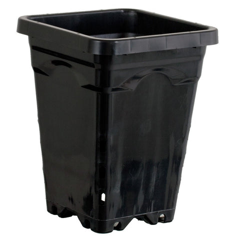 "Active Aqua 5""x5"" Square Black Pot - Case of 100"