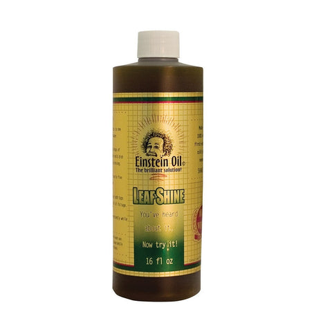 Einstein Oil Einstein Oil  Concentrate, 16 oz