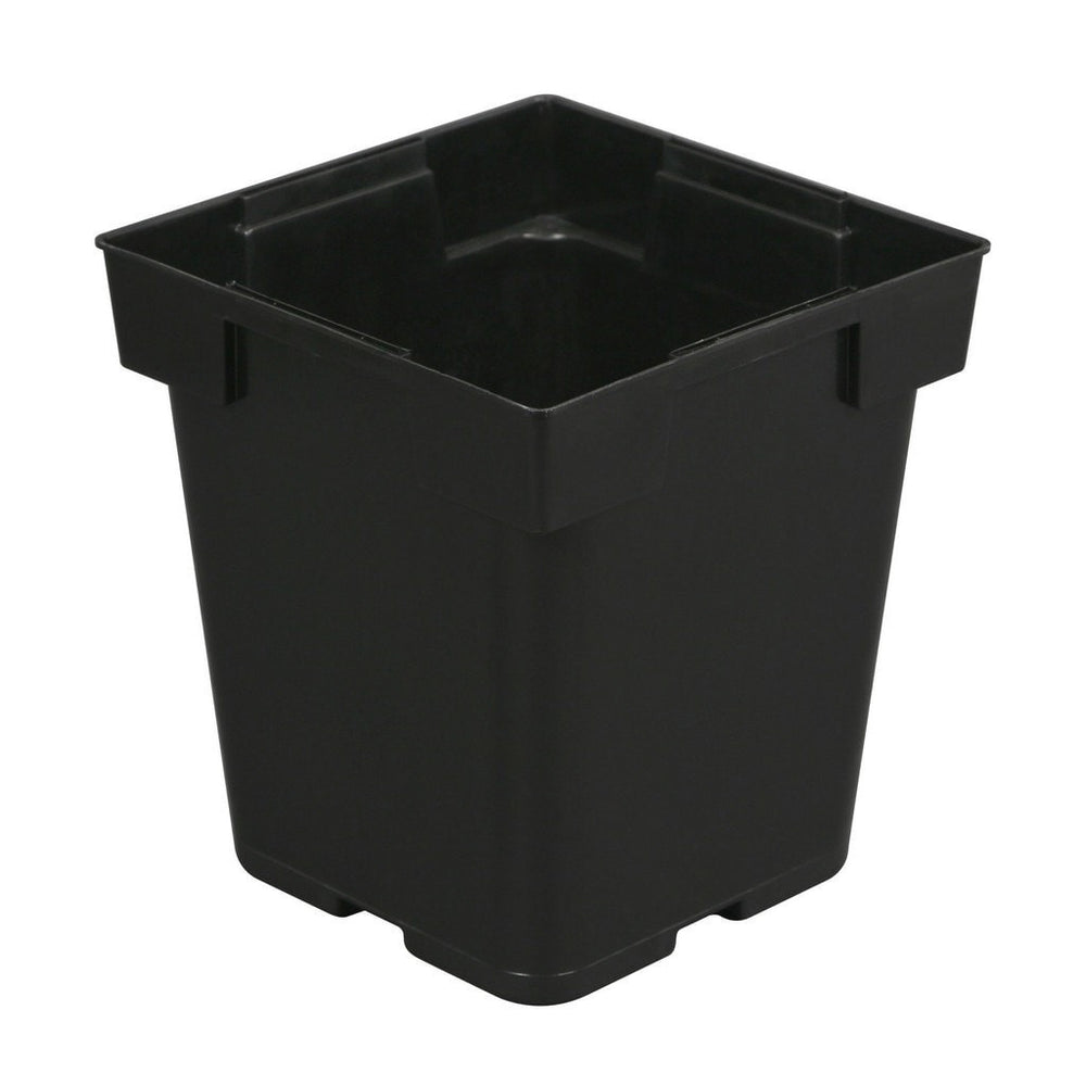 Generic - BJ Black Square Pot (Jumbo Senior) 5 in x 5 in x 6.5 in