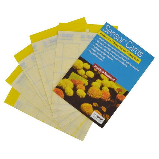 Sensor Yellow Monitoring Cards 50/Pack-NWGSupply.com