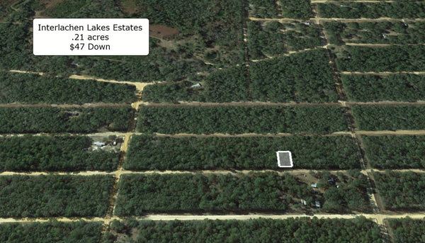Invest or Build! .21 Acre Lightly Wooded Lot Minutes to Lake Grandin