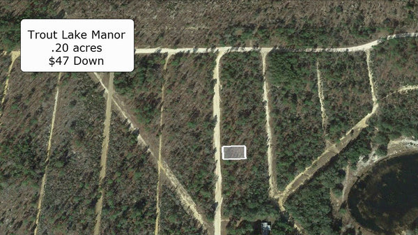 .20 Acre Lightly Wooded Lot in Trout Lake Manor -Owner Finance