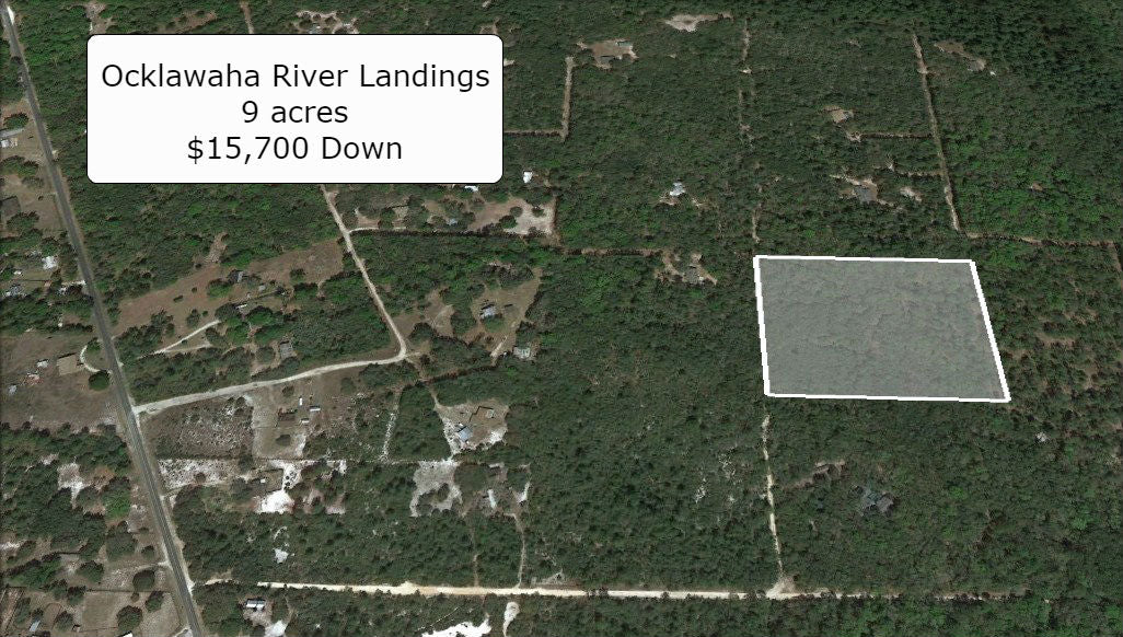 9 Acre Property for Sale-A1 Zoning- Outskirts of the Ocala Forest
