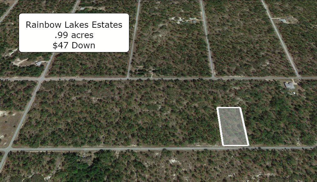 Oversized 99 Acre Lightly Wooded Lot On Paved Rd At Rainbow Lakes Estates