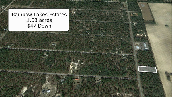 Oversized 1.03 Acre Lightly Wooded Lot on Paved Rd at Rainbow Lakes Estates