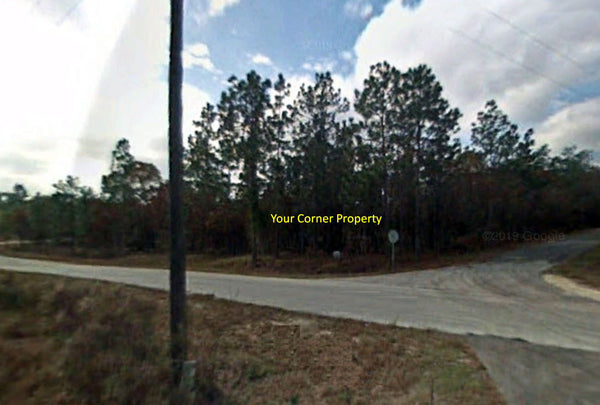 .24 Acre Lightly Wooded Corner Lot on Paved Road - Rainbow Lakes Estates