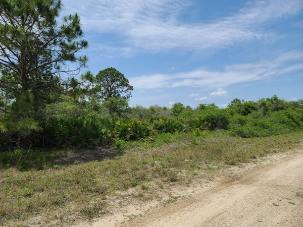 Ready to Build! 1.06 Acre Cleared Lot nearby 27 Small and Large Lake