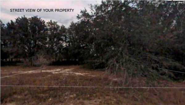 Pristine .34 acre lot on Paved Road-Multiple Lots Available