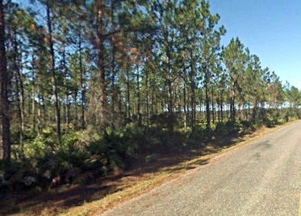 182.86 acre Prime Farm Location - Use for Ranch, Cattle, Crops, Home!