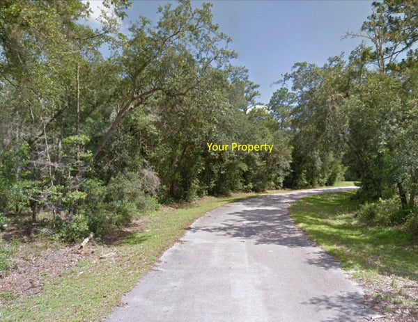 Lots of Potential! .38 Acre Lot on Paved Road at Silver Spring Shores