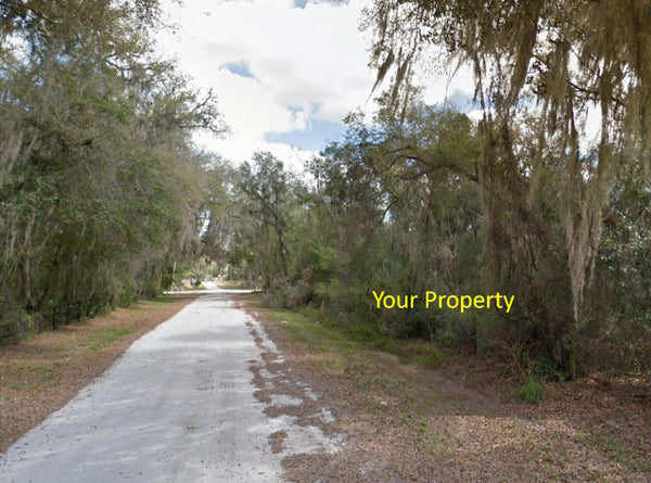 Invest or Build! Mobile Friendly .21 Acre Adjoining Lots in Citra