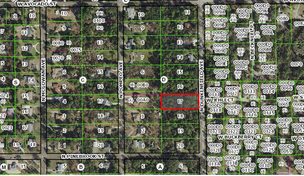 .91 acre lot on paved road-Owner Financing