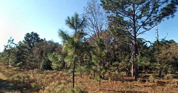 Invest or Build! .25 acre Rainbow Pk. CLEARED Lot with Owner Financing