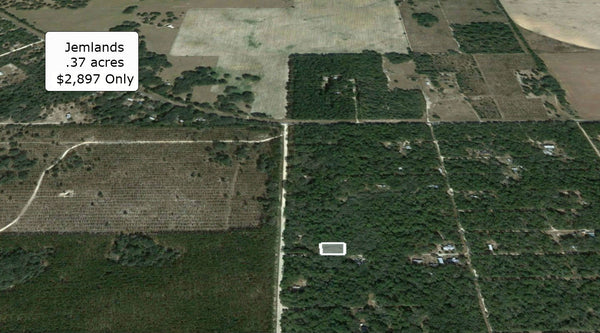 Invest or Build! Beautiful .37 Acre Lot Minutes to Chiefland Downtown