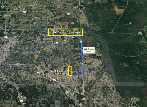 Exclusive .34 Acre Silver Springs Shores Lot Near Near Jervey Grantt Park