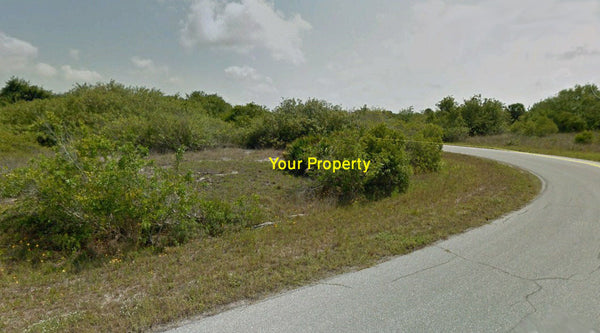 Partially Cleared .25 Acre Corner Lot on Paved Near Myakka River