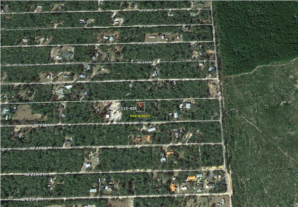 Premium .18 Acre Lot in Ocala National Forest Campsites -Owner Finance