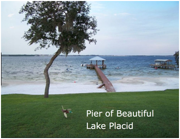 .23 Acre Partly Cleared -Walking distance to Placid Lakes Country Club