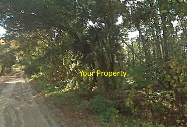 Amazing .27 Acre Mobile Friendly lot On a Tree Covered Road