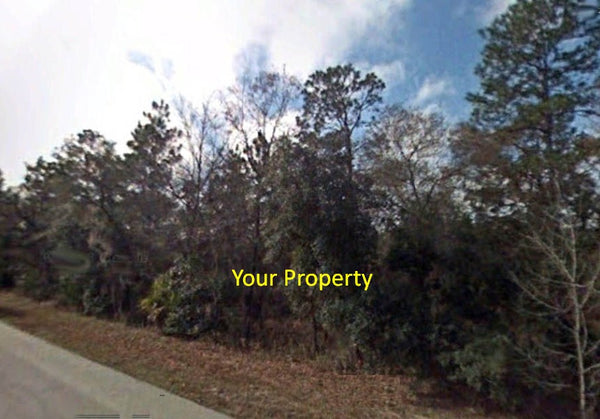 Pristine .31 Acre Lot on Paved Road Surrounded by Lakes-Owner Finance