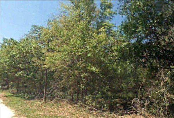 .23 Acre Wooded Lot - Ready to build - Mobile Friendly- Owner Finance