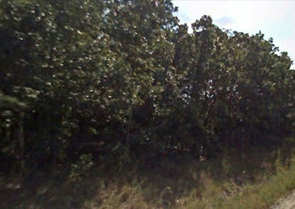 Oversized 8 Acre Lot -Build Your Own Ranch or Farm - Mobile Friendly!