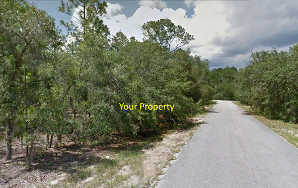 .23 Acre Lot Near The Country Club at Silver Springs Shores – Owner Finance