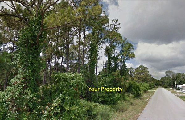 .17 Acre Residential Lot Close to Lake Jackson and Golf Hammock Golf Club