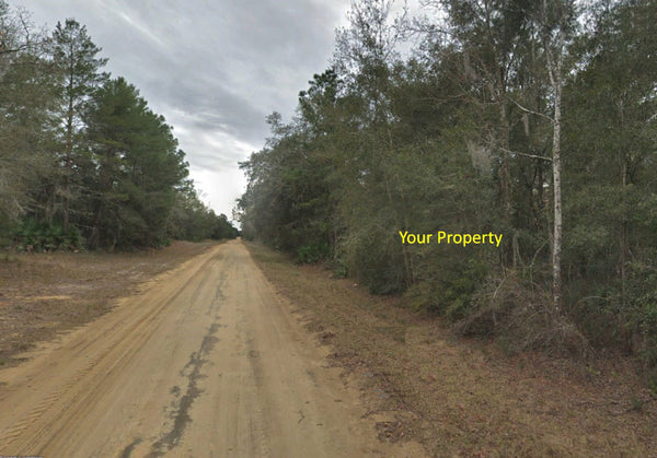 Beautiful .22 Acre Property-Popular Interlachen Lake Estates Community
