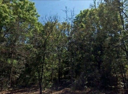 Premium .23 Acre Lot- A Great Place to Live in Satsuma-Owner Finance