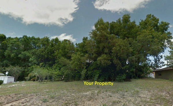 Partially Cleared .22 acre lot on paved road 4 minutes to Downtown Inverness City