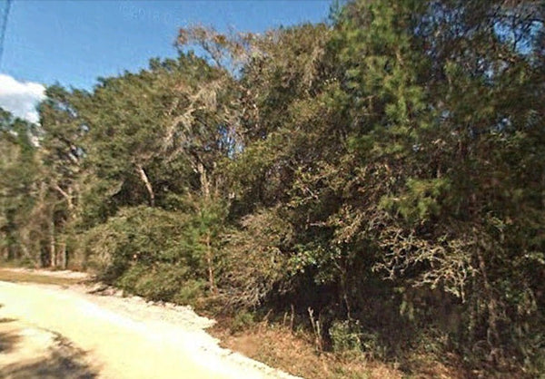 Exclusive .69 Acre Triple Lot-Close to Lake -30 min from Ocala!