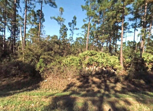 Bunnell 1.1 acre Corner Lot Near Crescent Lake!