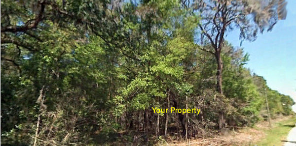 Exclusive .28 Acre Lot Close to Avon Park Airport- Owner Finance